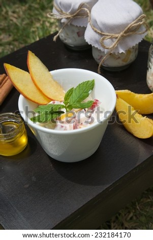 Homemade yogurt with pieces of fresh peach and cinnamon in a white dish on a black wooden surface. Pieces of peach, honey in the glass, cinnamon sticks and peach yogurt glasses in the background