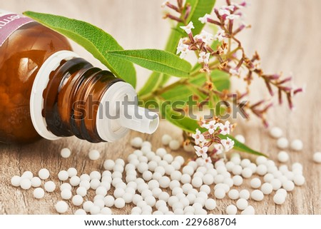 Homeopathic granules scattered around a glass bottle and a medicinal herb on a wooden table - stock photo
