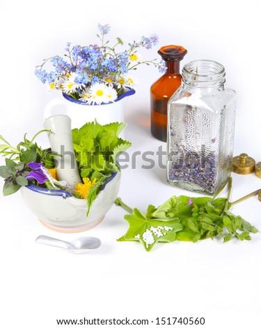 Homeopathy, medicinal herbs - stock photo