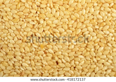 Honey bars with  sesame as background