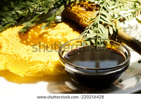 Honey beehive still attached to the branch and a glass bowl - stock photo