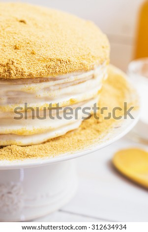 Honey cake with sour cream decorating with crumb
