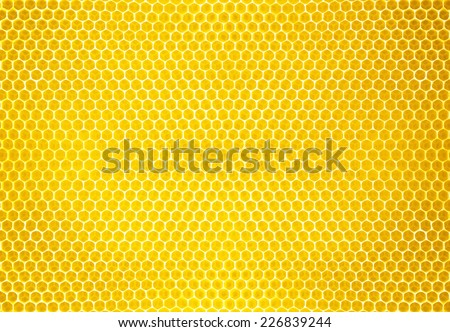 honey comb background or texture - stock photo