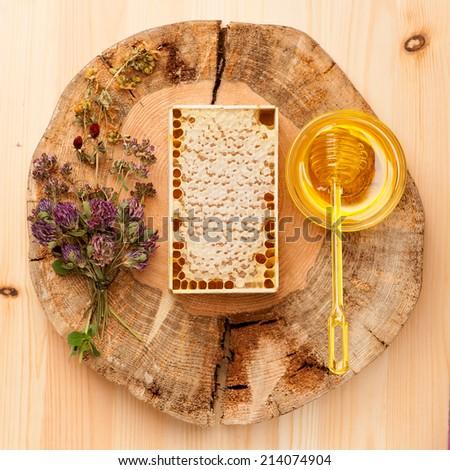 Honey comb, honey and dried herbs - stock photo
