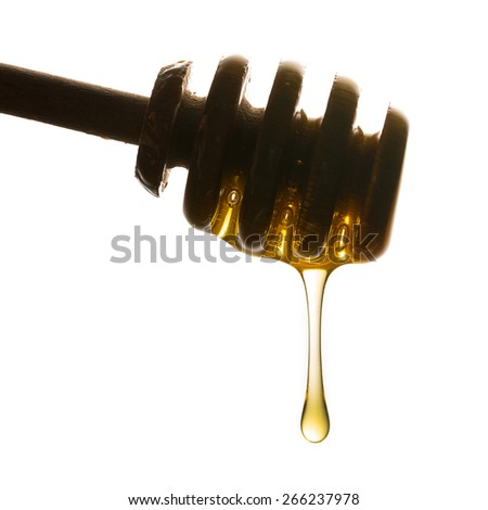 honey dipper with dropping honey on white background - stock photo