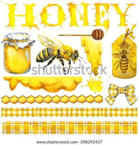 Honey, honeycomb, honey bee. Set for design label products from honey. Watercolor illustration