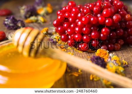 honey with the honeyspoon and curing herbs and berries symbolizing alternative medicine - stock photo