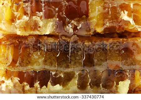Honeycomb, macro view - stock photo
