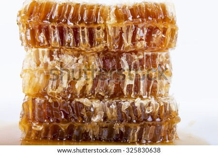 honeycomb with honey on a white background - stock photo