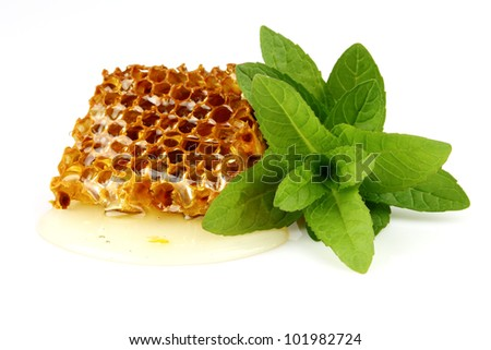 Honeycomb with mint - stock photo
