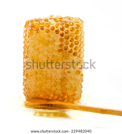 honeycomb with wooden spoon on white background