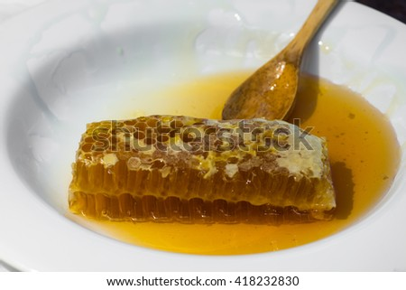 Honeycombs with honey, in a white plate - stock photo