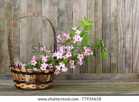 Honeysuckle flowers in a basket with a weathered wood background