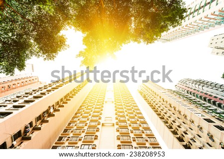 Hong Kong, China. Views of the skyscrapers below. Sunset. Residential house. Trees.