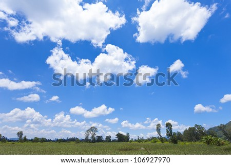 Hong Kong wetland with blue sky - stock photo