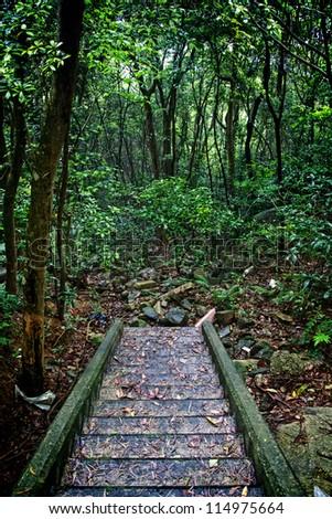 Hongkong Nature - stock photo