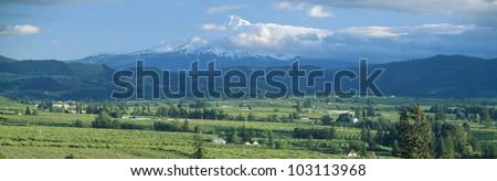 Hood River Valley and Mount Hood, Oregon - stock photo