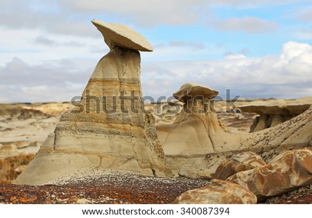 Hoodoo in Bisti/De-Na-Zin Wilderness Area, New Mexico