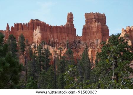 Hoodoos and pine trees - stock photo