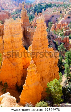 Hoodoos in Bryce Canyon NP in morning-light, Utah, USA - stock photo