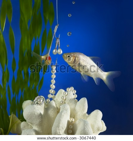 Hooked on Pearls Under Water - stock photo