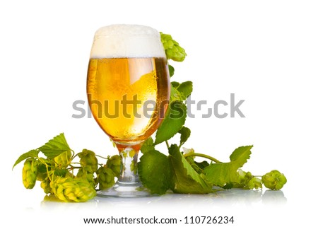 Hop cones with beer isolated on white - stock photo