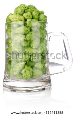 hop in glass for beer isolated on white background - stock photo