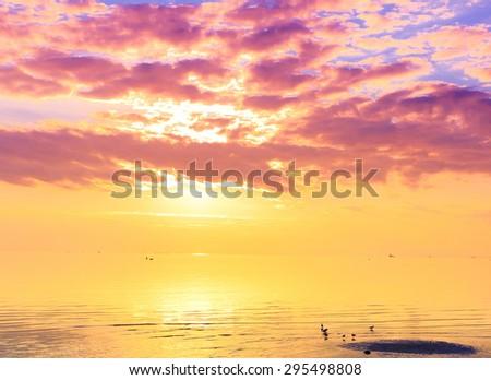 Horizon Panorama Gold  - stock photo