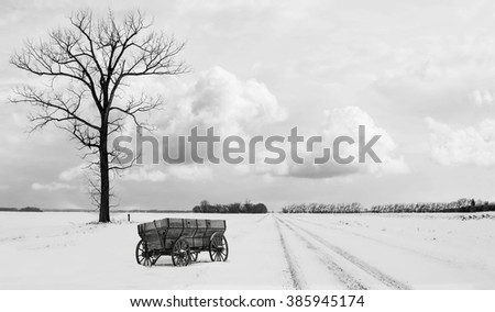 horizontal black and white image of a single tall tree sitting along side a snowy gravel road with an old wood chuck wagon sitting beside it in the winter time - stock photo