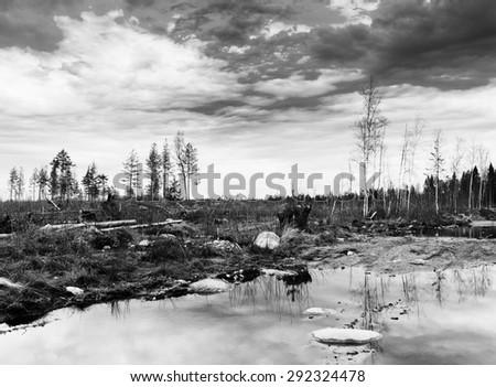 Horizontal black and white karelian nature landscape background backdrop  - stock photo