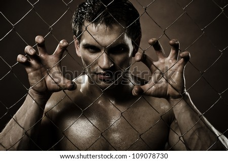 horizontal closeup portrait  felon guy ,  out of netting   steel fence - stock photo
