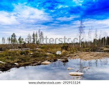 Horizontal color karelian nature landscape background backdrop  - stock photo