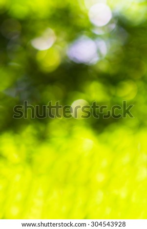 Horizontal green bokeh background