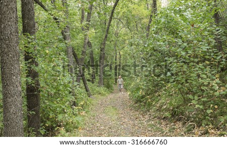 horizontal image of a man enjoying a solitary walk along a hiking trail deep in the woods surrounded by green trees in the summer time. - stock photo