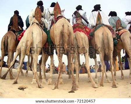 Horizontal of Tuareg nomads on camels watching a desert festival - stock photo