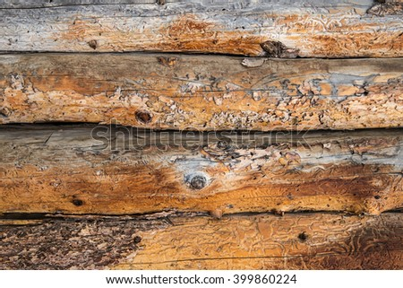 horizontal orientation close up color image of weathered, vintage, log cabin exterior wall as a textured background / Vintage Log Cabin Exterior Wall - Horizontal - stock photo