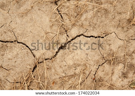 horizontal orientation close up of barren, cracking, scorched earth with dried grass accents and copy space / Close up of Drought - stock photo