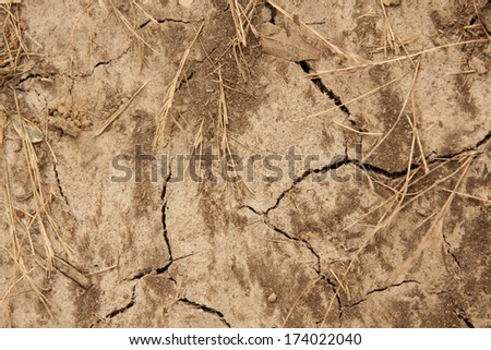 horizontal orientation close up of scorched, bleak, weathered earth and dried grass with many cracks running through it / Scorched by the Sun - stock photo