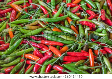horizontal orientation of brightly colored variety of sweet peppers with copy space / Horizontal Sweet Peppers - stock photo
