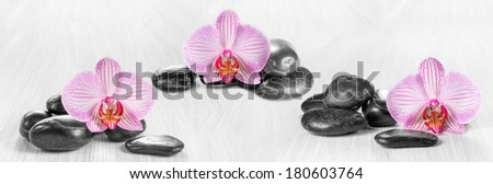 Horizontal panorama with pink orchids and zen stones on a wooden background - stock photo