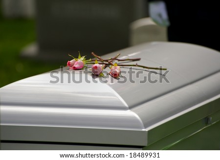 Horizontal photo of three roses on casket at Arlington National Cemetery