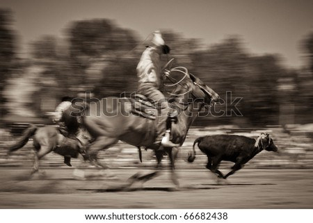 Horizontal photograph of two cowboys attempting to rope a cow during a Montana rodeo in summer. - stock photo