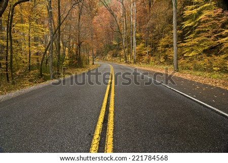 Horizontal Shot Of Mountain Road With Fall Foliage/ Road Surrounded By Fall Foliage - stock photo
