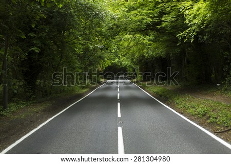 Horizontal view of an empty country lane with white line markings surrounded by forest trees in the daytime - stock photo