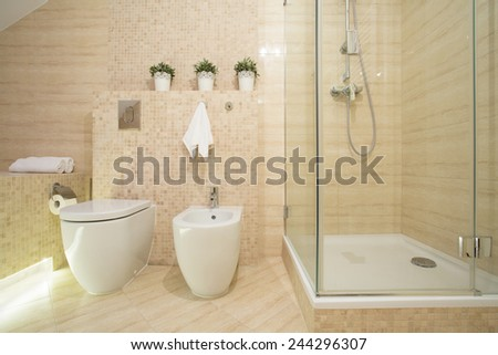 Horizontal view of bidet, toilet and shower