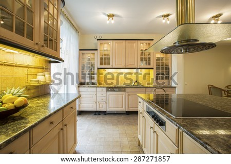 Horizontal view of big kitchen interior