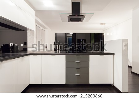 Horizontal view of black and white kitchen