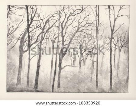 Horror woods print - stock photo