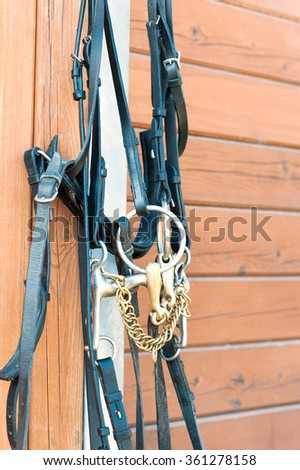 Horse bridle hanging on stable wooden wall. Summertime closeup outdoors vertical image. - stock photo
