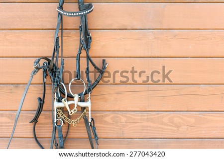 Horse bridle with decoration hanging on stable wooden wall. Front view. Summertime closeup outdoors. - stock photo